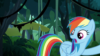 "Rainbow Dash ""you said go over him!"" S6E13"