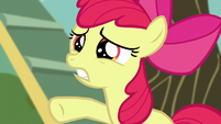 """Apple Bloom calling out """"just wait a second!"""" S5E4"""