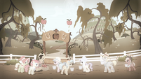 Apple trees destroyed S4E07