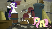 Fluttershy looking at raccoons; Smoky Jr. jumping to his parent S6E9.png