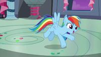"Rainbow Dash ""just like you guys!"" S6E7"