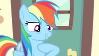 "Rainbow Dash ""who here besides me"" S4E24"