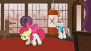 S01E12 Apple Bloom trenuje karate