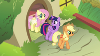 Twilight and Applejack leaving S4E16