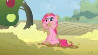 Pinkie Pie -what happened-- S02E01