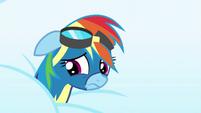Rainbow Dash feeling ashamed S6E7