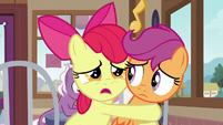 "Apple Bloom ""Scootaloo can't leave!"" S9E12"
