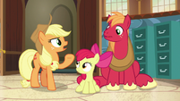 """Applejack """"now's as good a time as any"""" S7E13"""