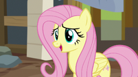 Fluttershy -while I appreciate your efforts- S7E5