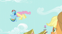 Fluttershy and Rainbow bump into each other in the air S6E11