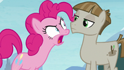 Pinkie Pie angrily calling Mudbriar wrong S8E3.png
