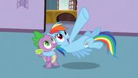 "Rainbow Dash ""a huge tower of rocks"" S03E09"