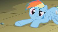 Rainbow Dash is never sorry S1E7