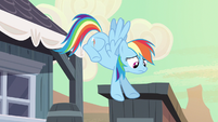 Rainbow Dash why didn't S2E14