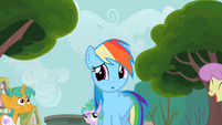 Rainbow Dash wow S2E8