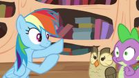 Rainbow wants Owlowiscious and Spike to give her a high-hoof S4E21