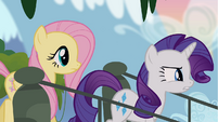 Rarity and Fluttershy stepping onto bridge S4E03