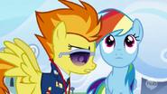 S03E07 Spitfire podchodzi do Rainbow Dash