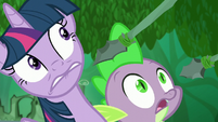 Twilight and Spike hear Zecora S5E26