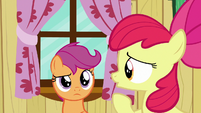 "Apple Bloom ""about what Crusaders can do"" S6E19"