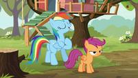 "Rainbow Dash ""follow in my hoofsteps"" S8E20"