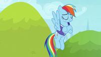 Rainbow Dash feeling proud of herself S8E17