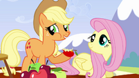 Applejack 'She is the best flyer in Ponyville' S3E7