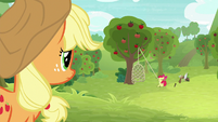 Applejack watches Apple Bloom from afar S9E10