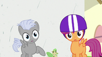 Chipcutter and Scootaloo look at other Crusaders S7E6