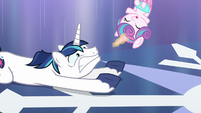 Flurry Heart about to land onto Shining Armor's hooves S6E2