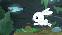 Fluttershy hopping alongside the log S9E18