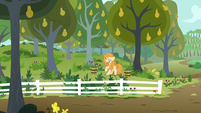 Pear Butter pulling a lot of weeds S7E13
