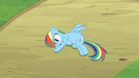 Rainbow Dash Pondering 4 S2E16