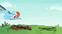 Rainbow Dash gathering tree branches S8E9