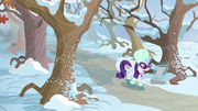 Rarity approaching Sweet Acorn Orchard MLPBGE.png