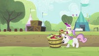 Sweetie Belle putting the tub down S2E05