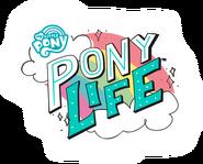 Логотип Pony Life