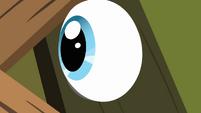 Pinkie Pie's eye popping through keyhole S2E18