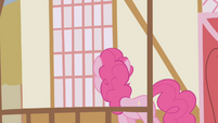 Pinkie Pie looking in town hall window S1E05