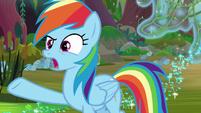 "Rainbow Dash ""what Daring Do did"" S8E17"