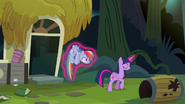 S04E04 Twilight zabiera Rainbow z domu