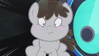 Truffle in shock S5E9