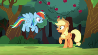 """Applejack """"I can count on ya to join"""" S6E18"""