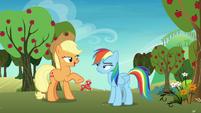 """Applejack """"skedaddle so I can help them"""" S8E5"""