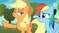 Applejack looking slyly at Rainbow Dash S8E5
