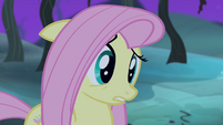 """Fluttershy """"I did"""" S4E07"""