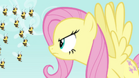 Fluttershy scolding the bees S4E16
