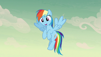 "Rainbow Dash happy ""that..."" S7E18"