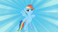 Rainbow Dash hero S2E8