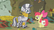 S01E09 Zecora i Apple Bloom